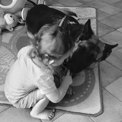 la maman chien et son chiot garçon