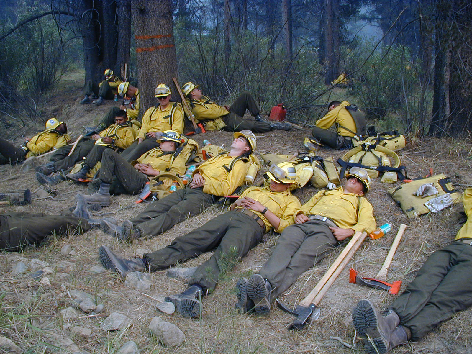 Rest time & Wildland Fire Leadership: Wildland FF Health and Safety: Sleep