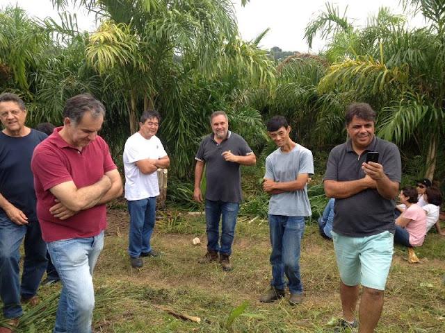 Secretaria de Desenvolvimento Agrário promove dia de campo sobre a cultura de Pupunha em Registro-SP