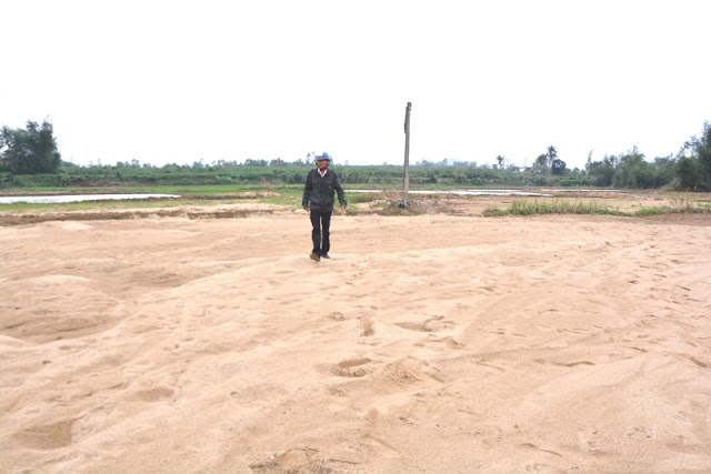 """Quảng Ngãi: """"Bới"""" cát tìm ruộng"""