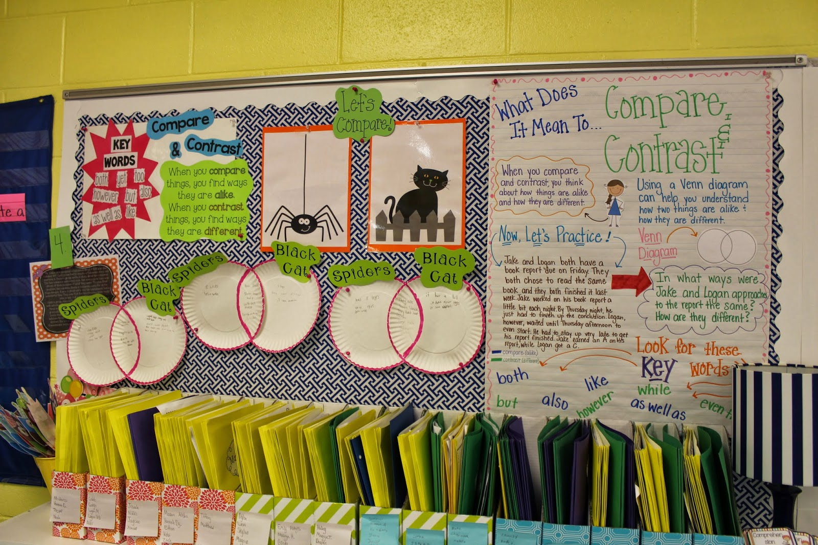 venn diagram bulletin board paragon defrost timer 8141 20 wiring life in first grade compare and contrast