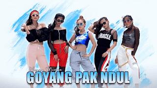 Lirik Lagu Goyang Pak Ndul - Rheyna Morena