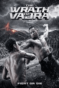 The Wrath of Vajra (2013) Movie (Dual Audio) (Chinese-Hindi) 720p BluRay ESUBS