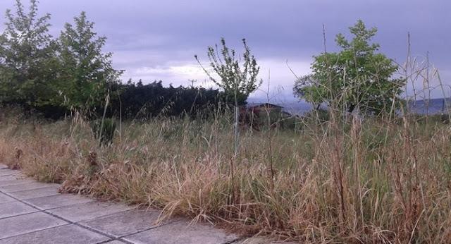Για κυρώσεις προειδοποιεί ο Δήμος Ηγουμενίτσας τους ιδιώτες που δεν έχουν καθαρίσει τα οικόπεδά τους