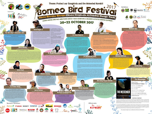 Bird Migration to Borneo | Sandakan Borneo Bird Club, Sabah