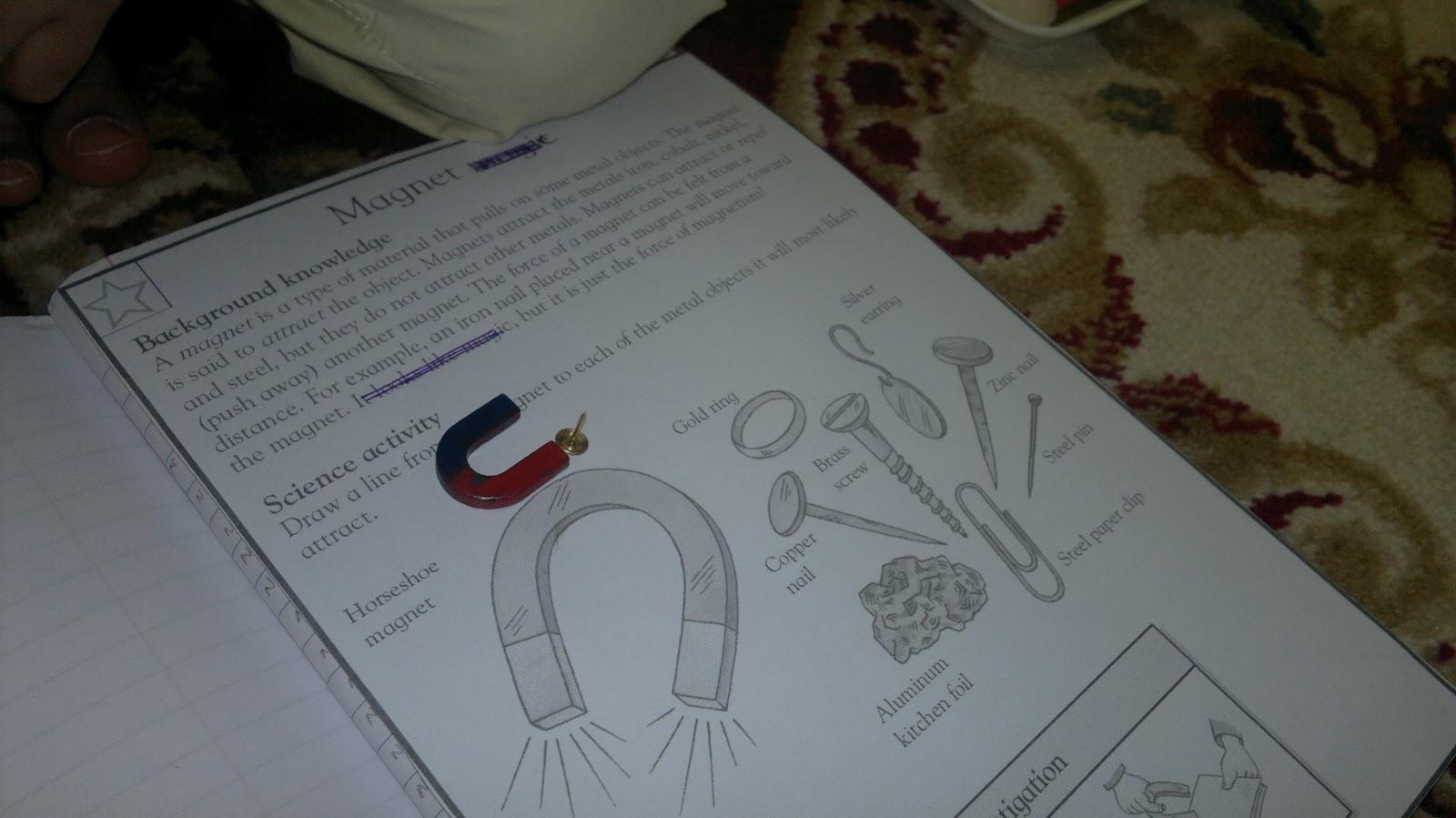 Umm Maimoonah S Journal Materials Magnet