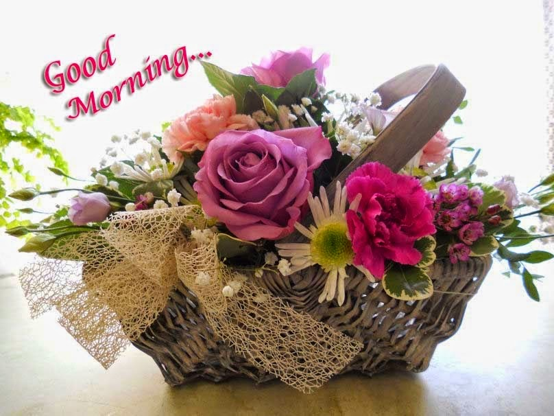 Good Morning Sunday Flowers Images : Top best good morning images with rose flowers