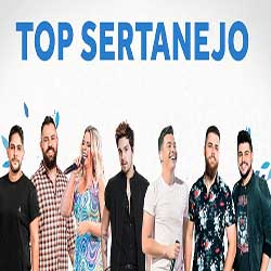 CD Top Sertanejo 2019 - As Melhores do Ano