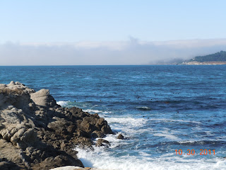 monterey california coast