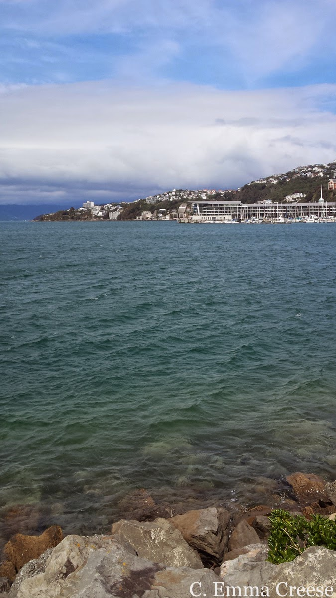 Wellington harbour, New Zealand - The siren call of home to a longterm expat