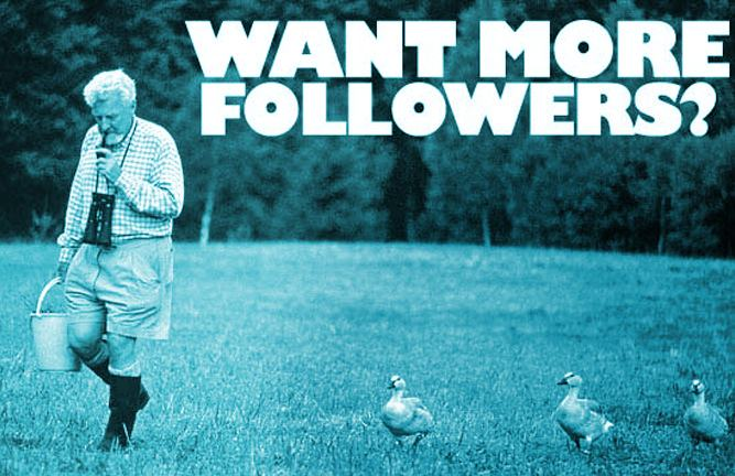 Best Practices For Getting Genuine Twitter Followers - infographic