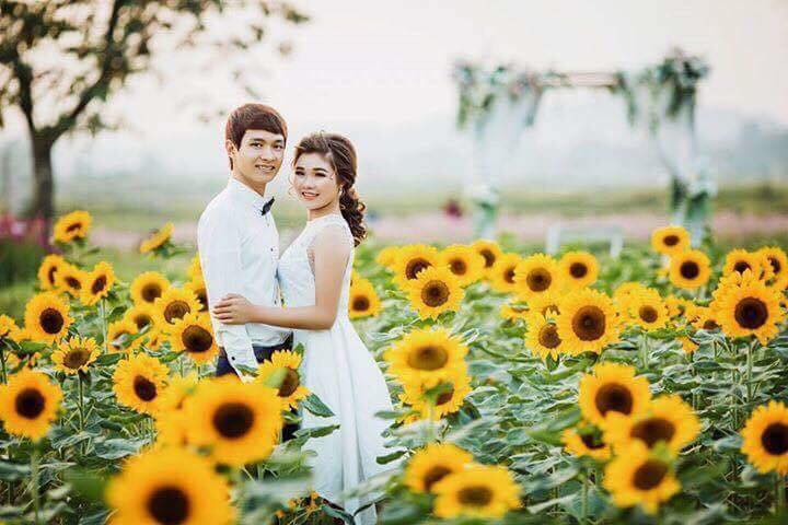 Giới trẻ 'phát sốt'' với vườn hoa hướng dương tại Bắc Giang -7