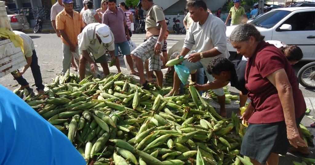 Resultado de imagem para imagens de milho verde sendo vendido em sao paulo do potengi