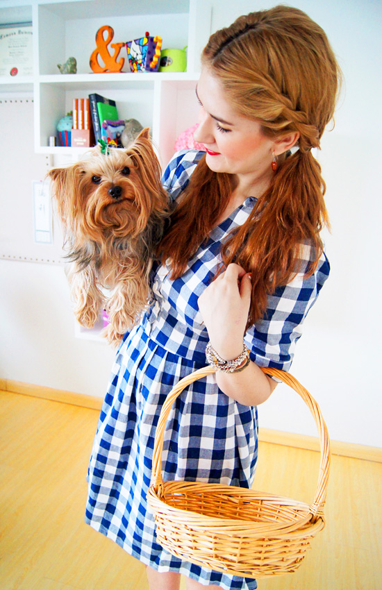 Easy Homemade Dorothy Costume Tutorial for Halloween
