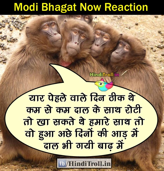 Modi Bhagat Troll| Modi BHagat Reaction Funny Photo | Modi Bhagat Funny Wallpaper