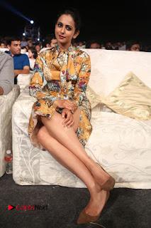 Actress Rakul Preet Singh Stills in Short Dress at Dhruva Pre Release Function  0124.JPG
