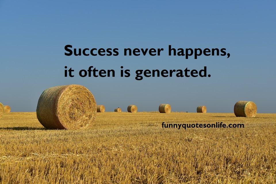 Success Is No Accident Quote Short Quotes