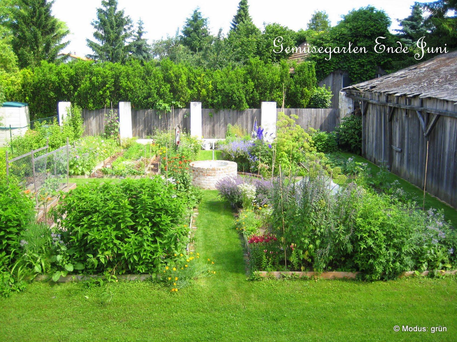 Gemüsegarten Anlegen   Diese 3 Pflanzen Kannst Du Direkt In Deinem ...
