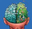 multinivel, tener exito, usar cerebro, formacion profesional, empresario multinivel exitoso