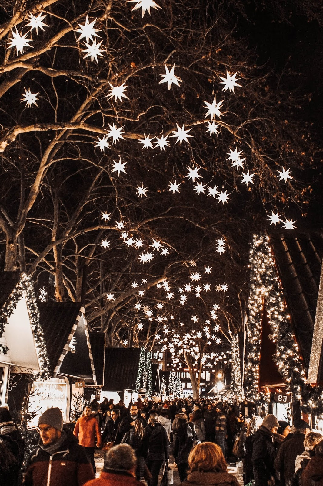 Germany Cologne Market of Angels Stars in Trees