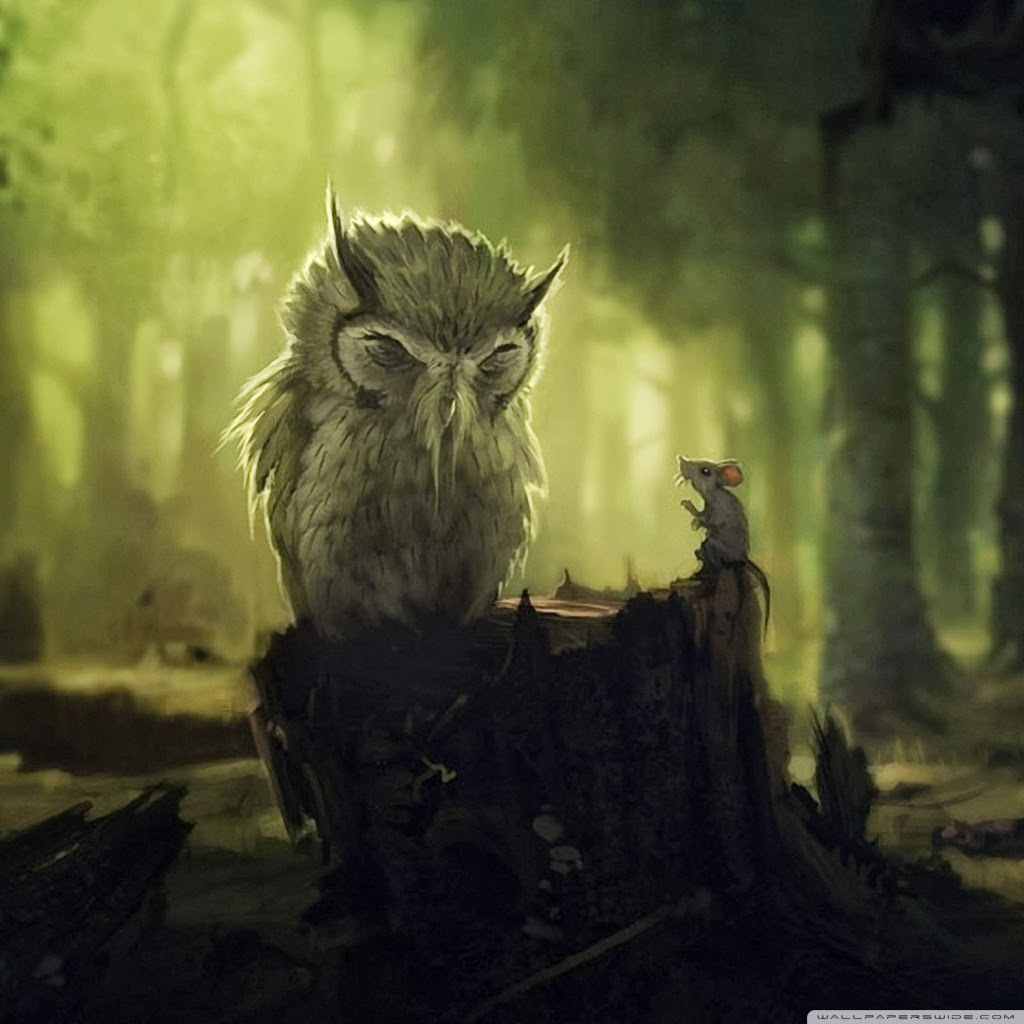 The Wise Owl | All About OWL