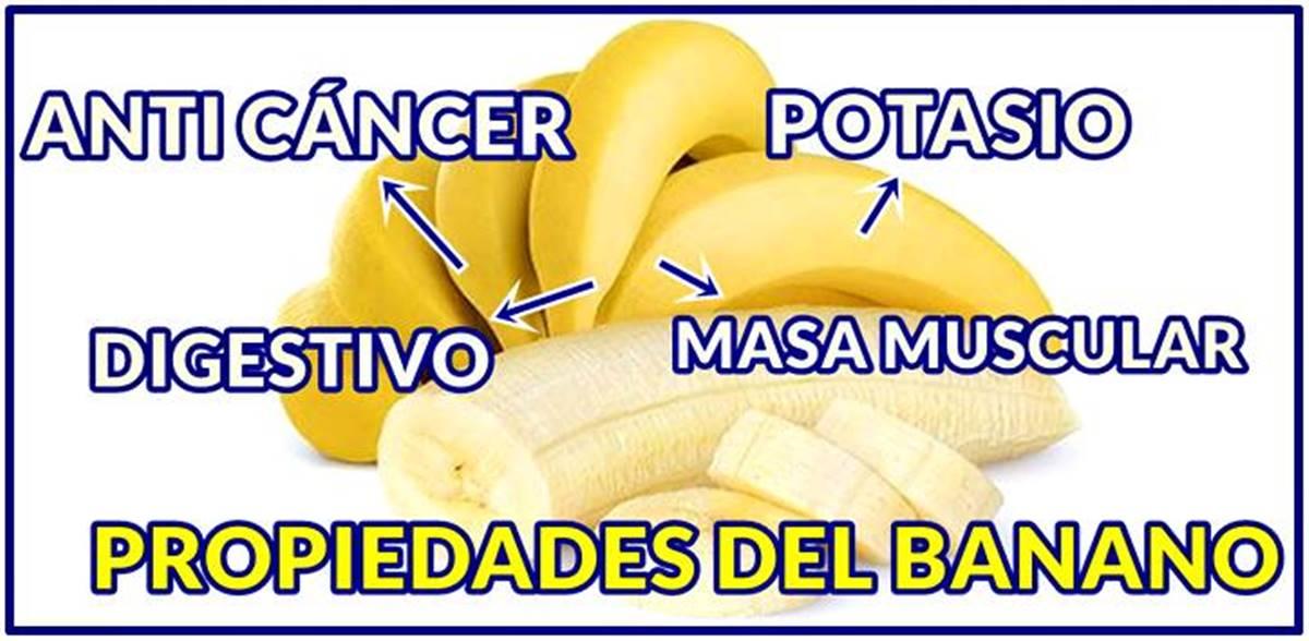 Grandes propiedades y beneficios del banano para la salud de todas las personas