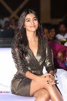 Pooja Hegde looks glamarous in deep neck sleevless short tight golden gown at Duvvada Jagannadham thank you meet function 109.JPG