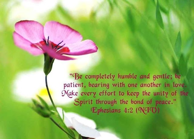 Be Completely Humble and Gentle