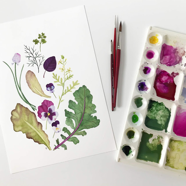 watercolor, botanical watercolor, botanical painting, garden harvest, watercolor herbs, watercolor flowers, watercolor leaves, Anne Butera, My Giant Strawberry