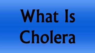 cholera-www.healthnote25.com