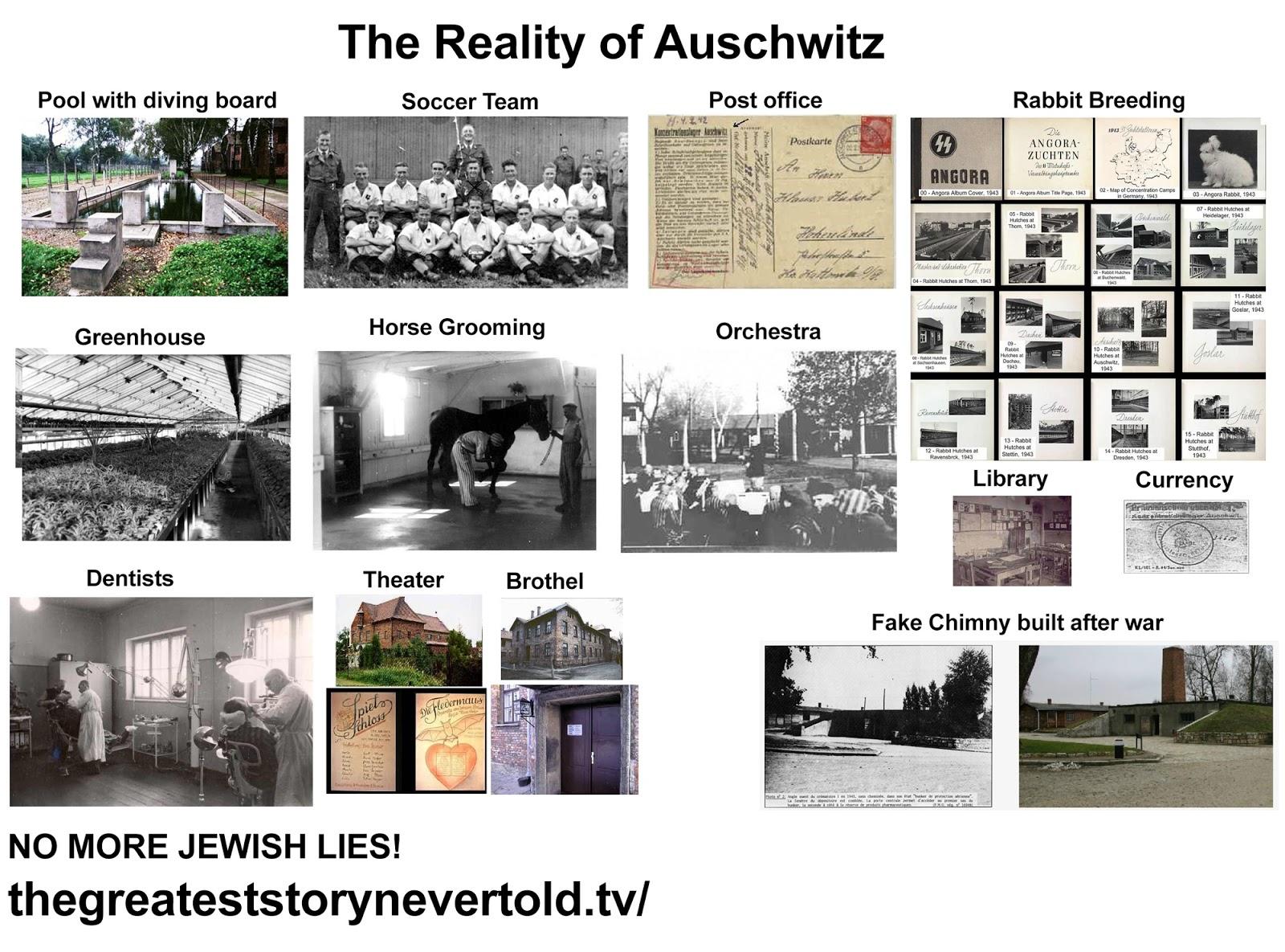 zzzHoloAuschwitz.jpg