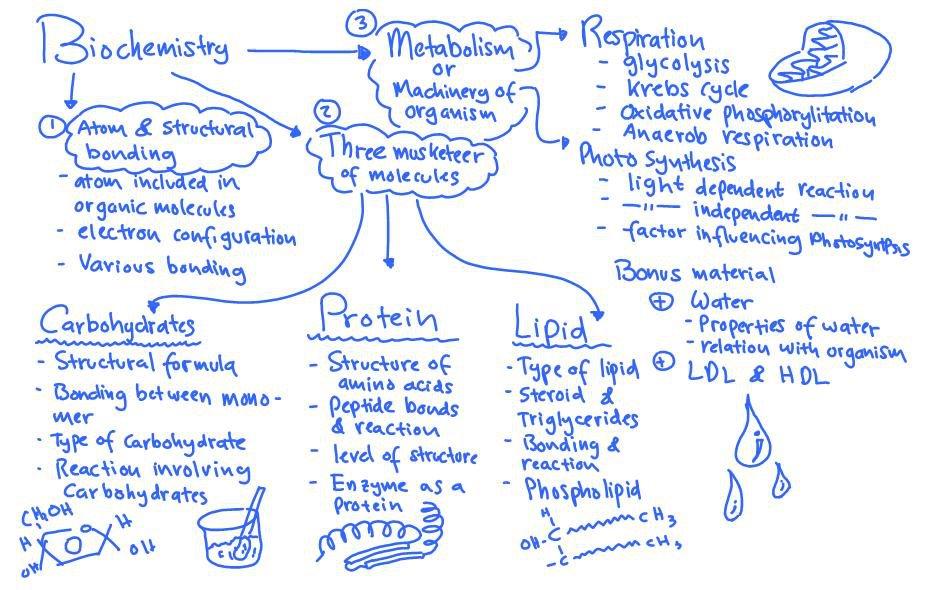 Jurnal Doc : jurnal tentang lipid pdf
