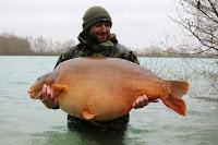 karper lac gigantica