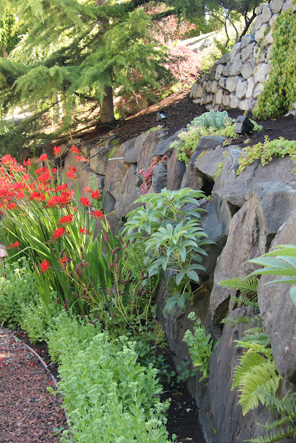 Gardening and Gardens: Private Gardens of Seattle