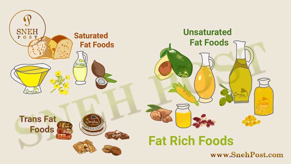 Fat nutrition guide about good fat foods and bad fat foods illustration to know what to eat and what avoid: Fat rich food illustration showing saturated fat foods (cheese, chocolate, coconut oil), Unsaturated Fat foods or Good fat foods (avocado, cashews, soybean, peanut, corn, canola, olive oils), Trans Fat foods or Worst fat foods (cake, doughnuts, crackers, cookies)