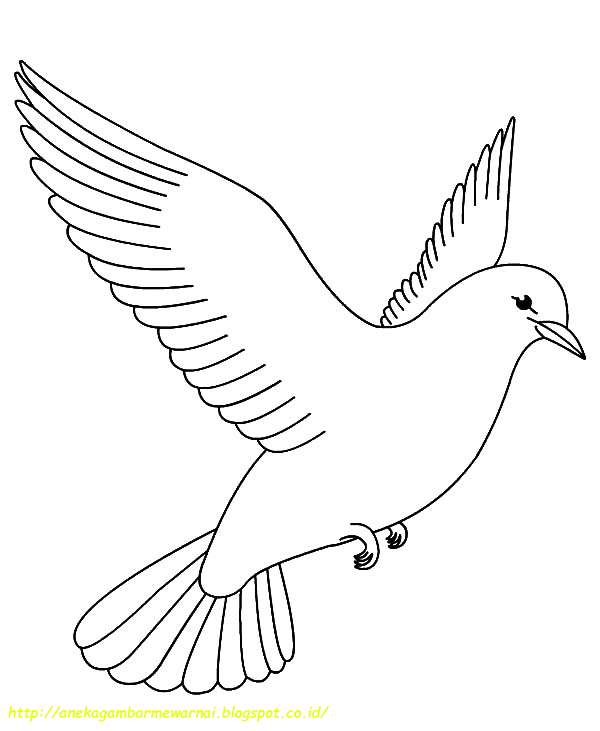 bird coloring pages rspb birds - photo#15