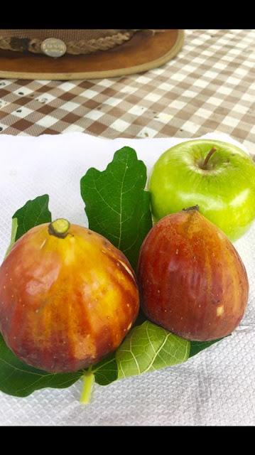 SUPER JUMBO Figs