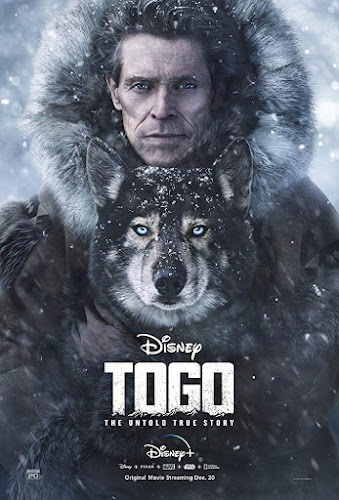 Togo (Web-DL 720p Dual Latino / Ingles) (2019)