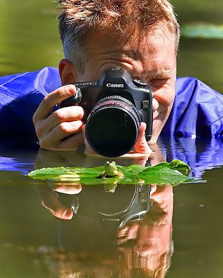 Rana es fotografiada en un lago