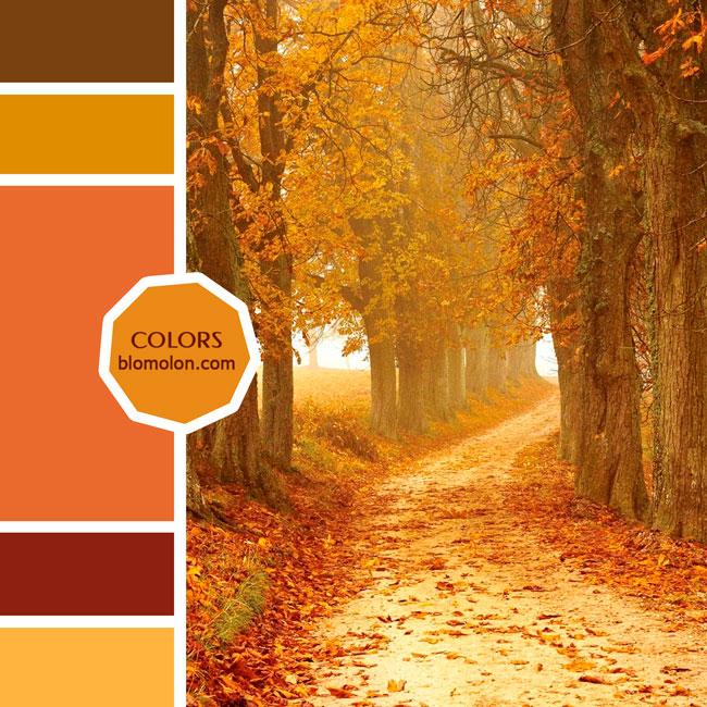 variedad_en_color_moodboard_86