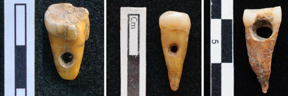 Dientes humanos perforados de época neolítica procedentes de Çatalhöyük (Turquía). Foto: SCOTT HADDOW / UNIVERSITY OF COPENHAGEN