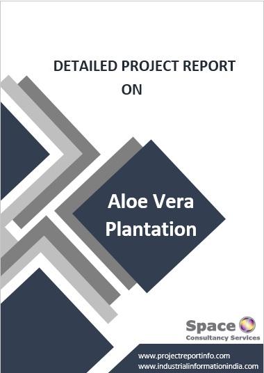Project Report on Aloe Vera Plantation