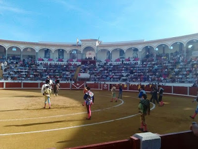 plaza toros pozoblanco coso llanos _@AytoPozoblanco