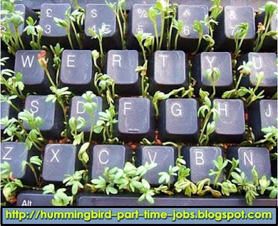 http://hummingbird-part-time-jobs.blogspot.com/2016/09/Income-Bangkok-vicinity.html
