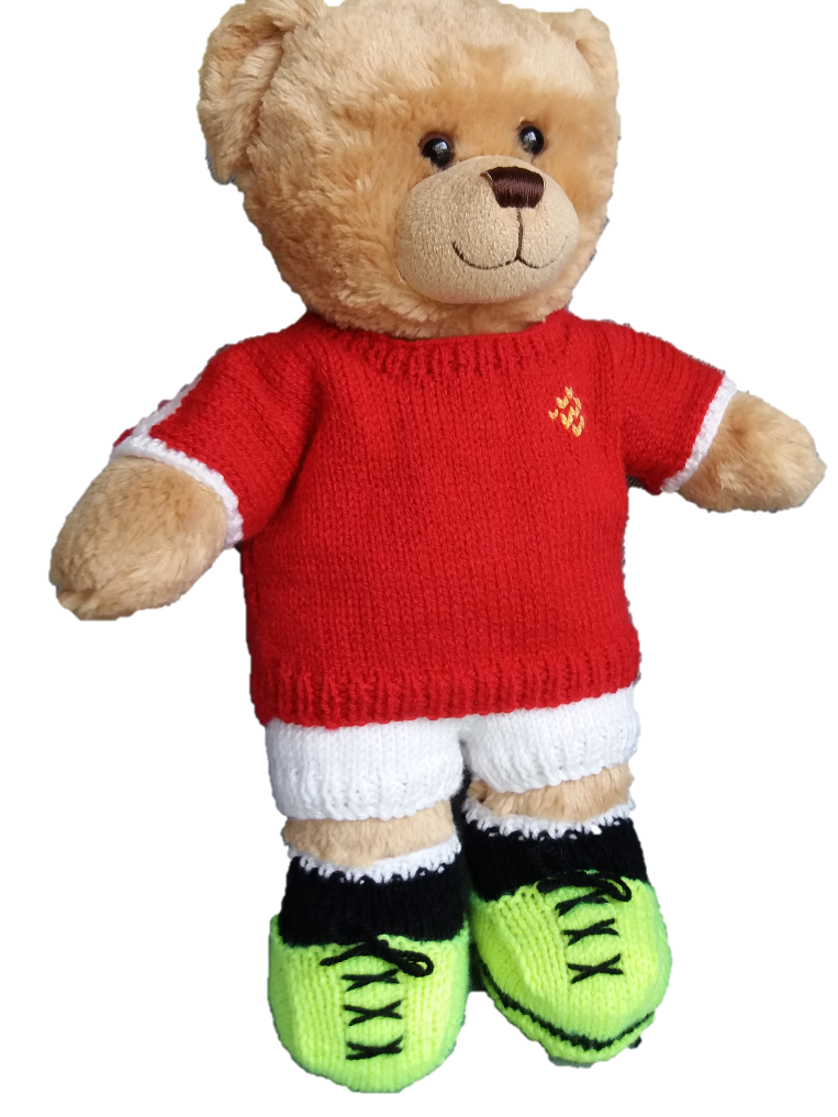 Linmary Knits Teddy Sports Kit