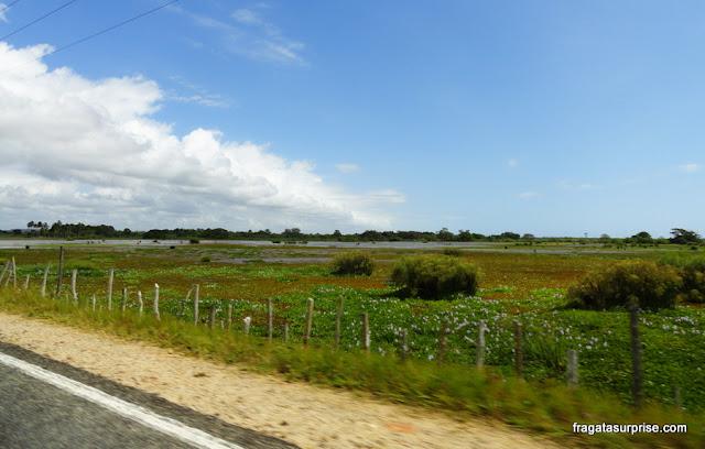 Lagoas do Litoral Norte da Bahia