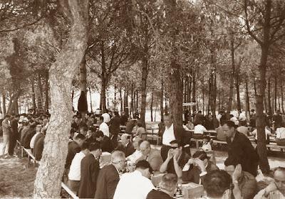 Fiesta Provincial del Ajedrez, 5 de julio de 1964