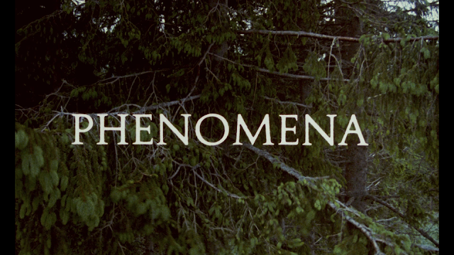 Phenomena Title Card