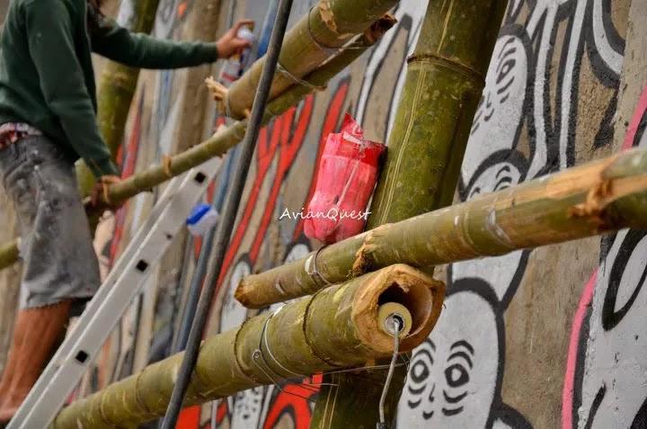 Tamawan Village Making of a Graffitti Mural Baguio City Philippines 23