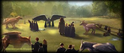 Harry Potter e il Prigioniero di Azkaban: La prima lezione di Hagrid